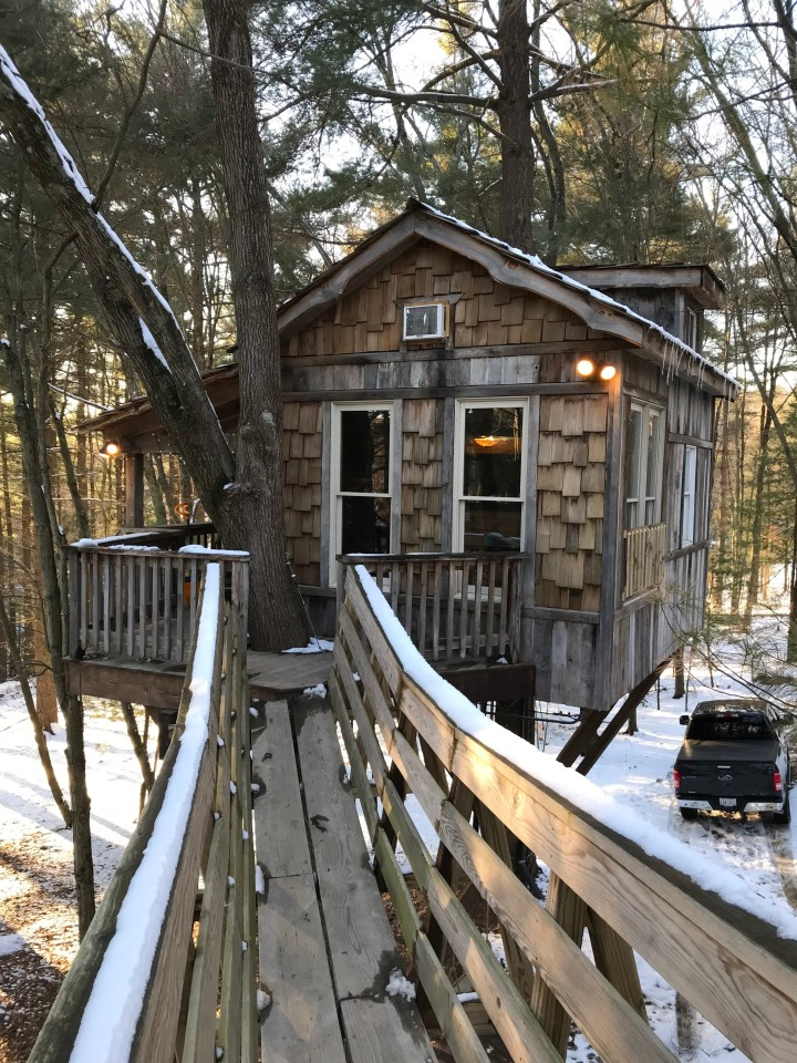Unplugging Treehouse Style